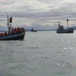 Husavik Whale Watching Boote